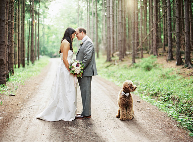 Pets-in-Weddings-Vicki-Grafton-Photography-Film
